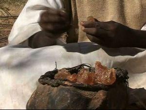 Sudan Gum Arabic