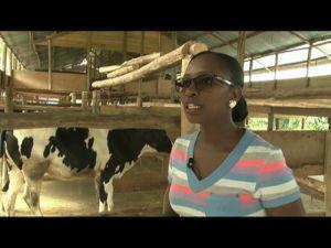 Uganda Small Scale Farmer -1